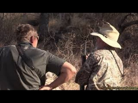 Hunting bushbuck video in South Africa