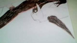 how to draw naruto 6 tailed fox vs pain