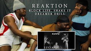 Luciano - Block Life, Shake It & Dreamer Drill | ALBUM REAKTION | UNERWARTET 😨🔥 | Tommy B.