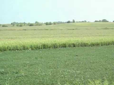 BUREAU COUNTY FARMLAND AT AUCTION