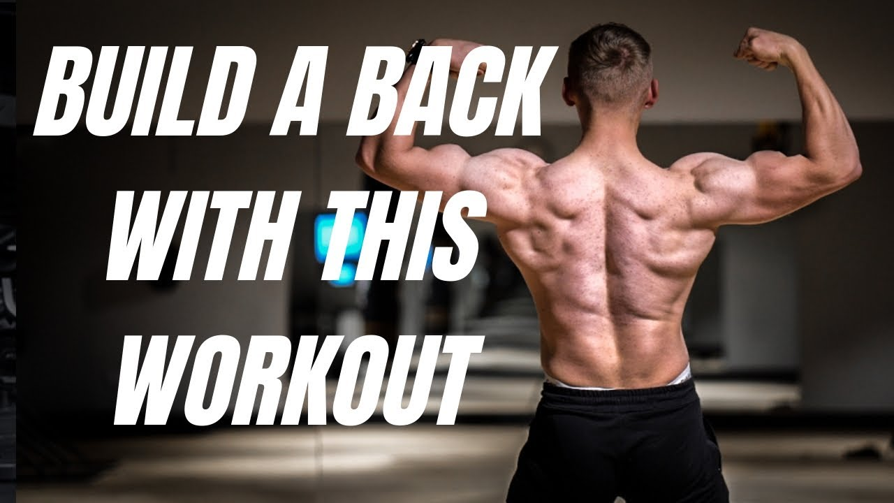 The PERFECT back workout - YouTube