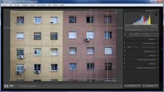 346 Nueva superposición de recorte, guías y cuadrícula en Lightroom 5 beta