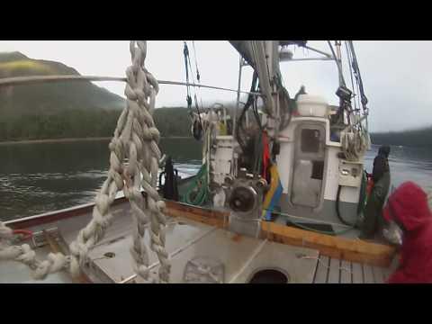 Salmon Seining 2018