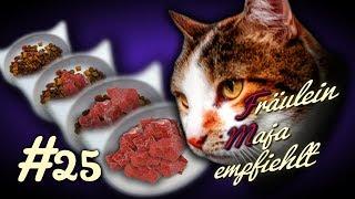 Futterumstellung der Katze, zwei Methoden mit denen es garantiert klappt #025