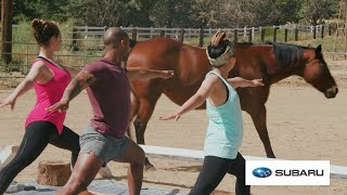 We Tried Horse Yoga To Achieve Inner Peace  // Presented By BuzzFeed & Subaru