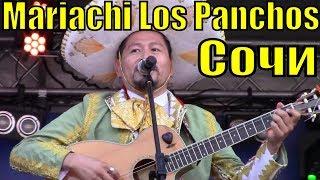 Как зажигают перед матчем Испанцы и Португальцы под мексиканскую музыку в Сочи Фестиваль болельщиков