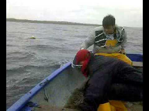 Kenny Fishing Creel wow