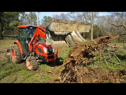 Kioti NX dismantling, pushing over and clearing lakefront trees Part 1