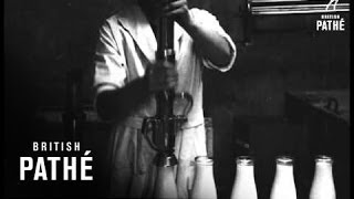 Milk Production Story (1920-1930)