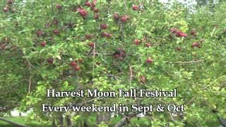 Fall Festival at Harvest Moon Farm & Orchard in North Salem, NY
