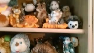 Видео 1. В доме живёт более 120 ёжиков