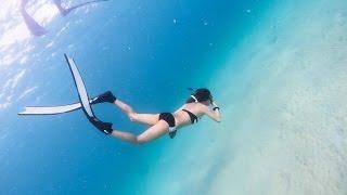 Free diving, Tioman island, Malaysia