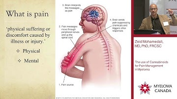 Marijuana for Pain & Neuropathy