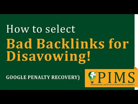 Select Bad Backlinks For Disavowing - Google Penalty Recovery | PIMS Institute