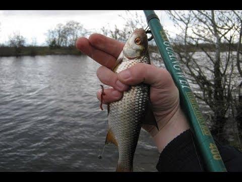 геннадий стрельцов где ловить рыбу в запорожье