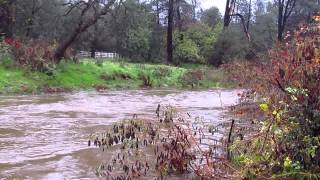 Our Creek is FULL to Over the Brim!