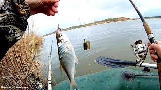 Рыбалка весной на удочку и фидер с лодки Поклевки