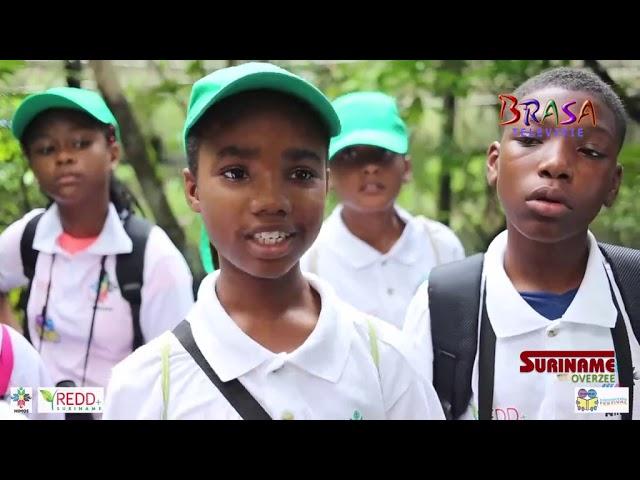 Suriname Overzee - Trots op ons bos deel 5   Vlindertuin