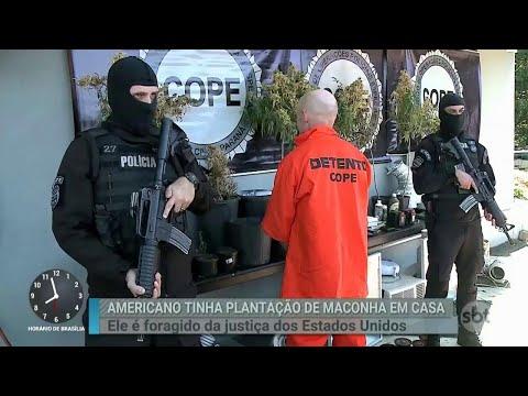 Americano foragido dos Estados Unidos é preso no interior do Paraná | Primeiro Impacto (23/05/18)