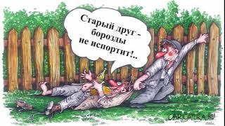 Веселые картинки и карикатуры про дружбу