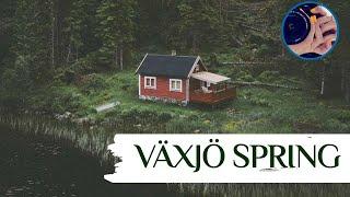 Spring season in Sweden موسم الربيع بالسويد #SPRING #الربيع