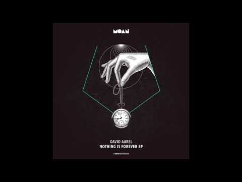 Download David Aurel - Nothing is Forever (Original Mix)