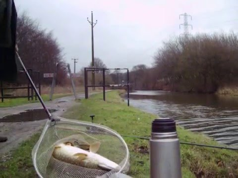 4lb Pike From Leeds Liverpool Canal At Shipley
