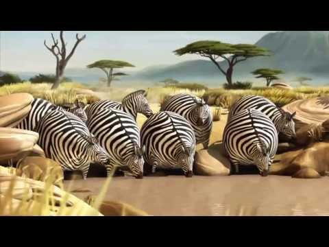 natural habitat in Africa is very funny animation (funny wildlife) (funny animals)