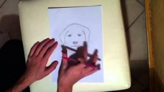 Apprendre à Dessiner: Cours de dessin pour faire un Chien - Dessiner un chien
