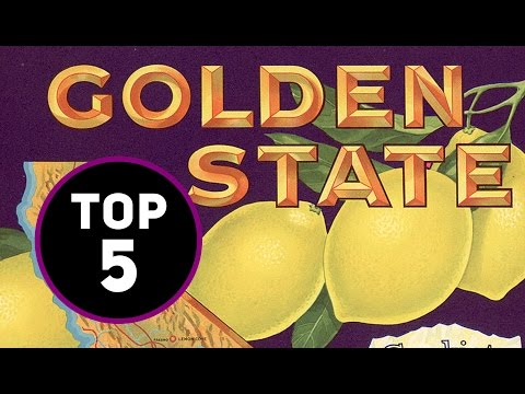 Representatives From The State Of California | Top 5 Players From California | Poker Central