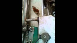 Automatic Dry Fish Cutting Machine Thumbnail