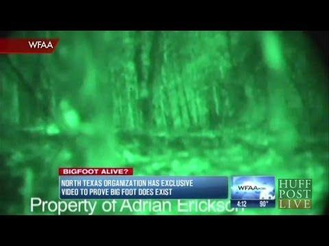 Researchers Claim Bigfoot Exists! | HPL