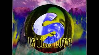 Stampede Dimitri vegas Like Mike DVBBS BOB MARLEY THIS IS LOVE mashup