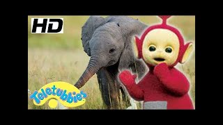 Teletubbies | Baby Elephant | Toy Play Video | Stop Motion Compilation | Toys For Kids