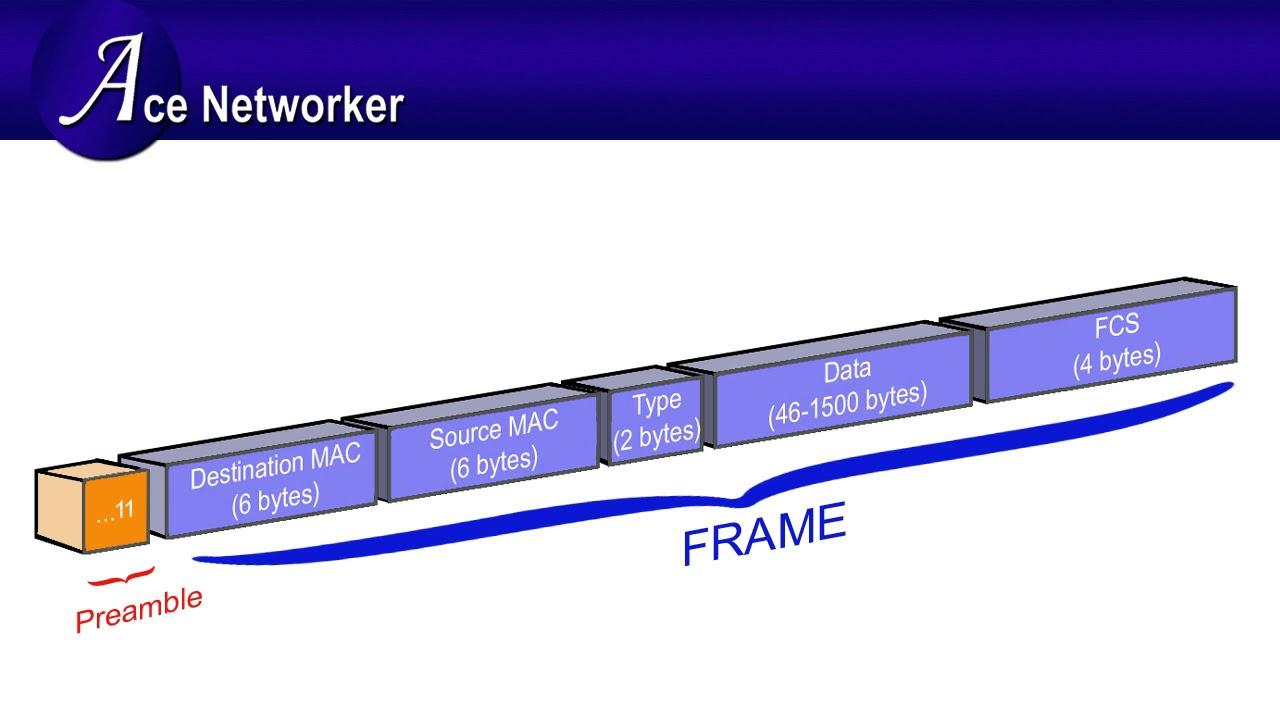 Ethernet Frame Format Explanation - YouTube
