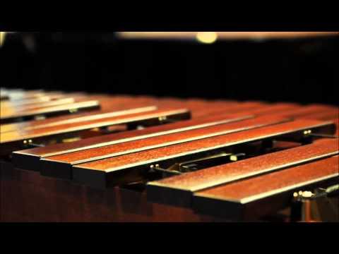 """(Presentimiento) Marimba """"ESPIGA DE ORO"""" De Venustiano Carranza Chiapas"""