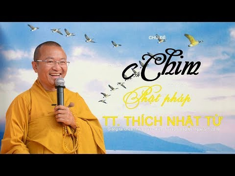 Hãy làm con chim đầu đàn Phật pháp - TT. Thích Nhật Từ