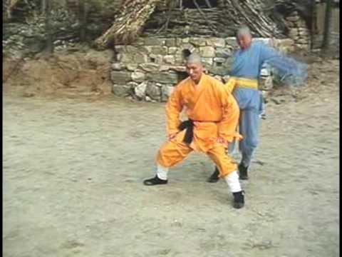 Shaolin Kung Fu: Iron Testicles