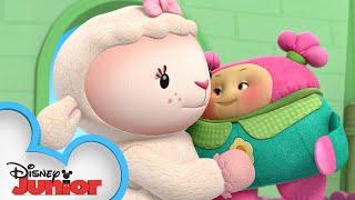 Snuggle Sylvie | Doc McStuffins Baby | Disney Junior