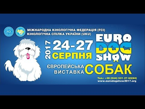 Euro Dog Show 2017 - 26.08.2017