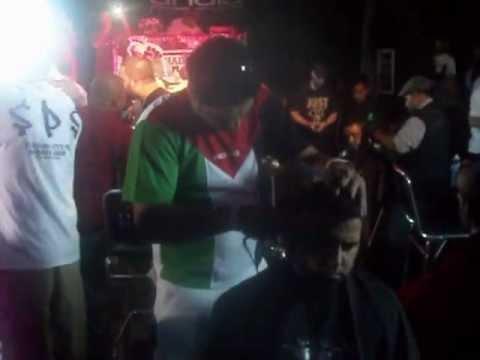palestine hair salon tampa, Florida