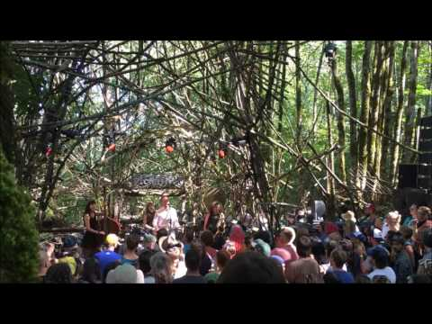 C.W. Stoneking - Live at Pickathon, Woods Stage 8/6/2016