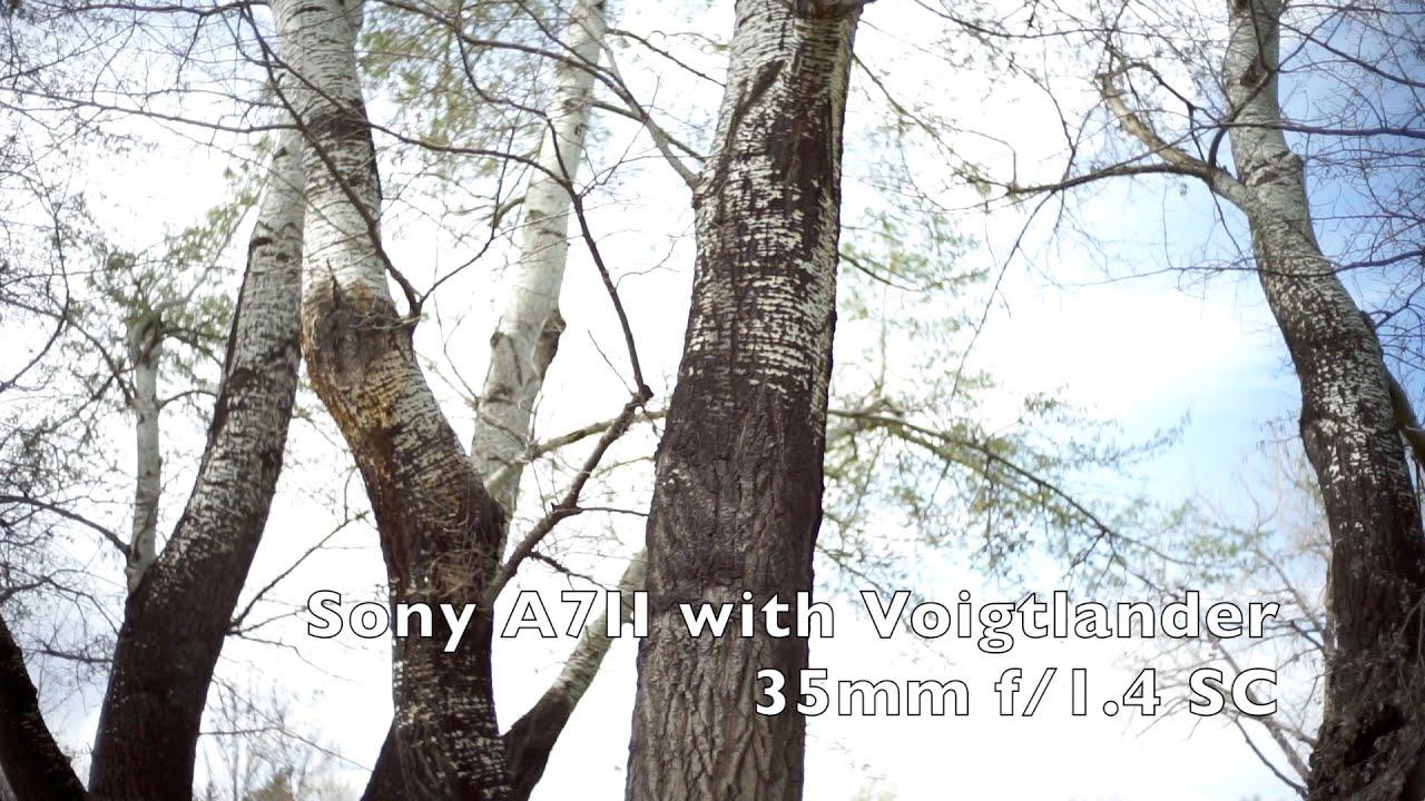 Voigtlander 35mm   Acquisti Online su eBay