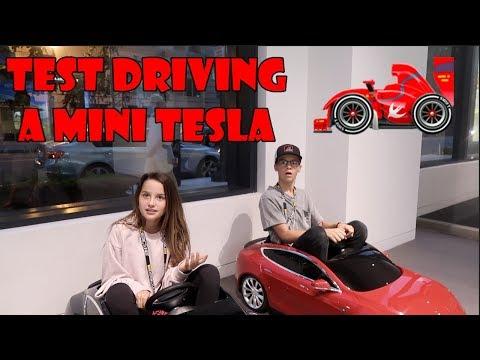 Test Driving a Mini Tesla 🏎 (WK 348.2) | Bratayley