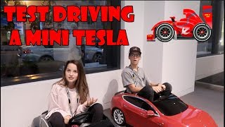 Test Driving a Mini Tesla 🏎 (WK 348.2) | Bratayley