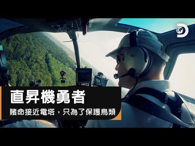 保護鳥類遠離高壓電大工程,直升機如何超危險接近電塔!:《直昇機勇者》㇑Heli Heroes: Mid-air Construction to Protect Birds