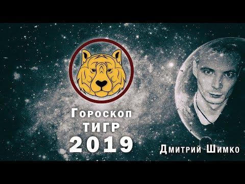 Гороскоп Тигр -2019. Астротиполог, Нумеролог - Дмитрий Шимко