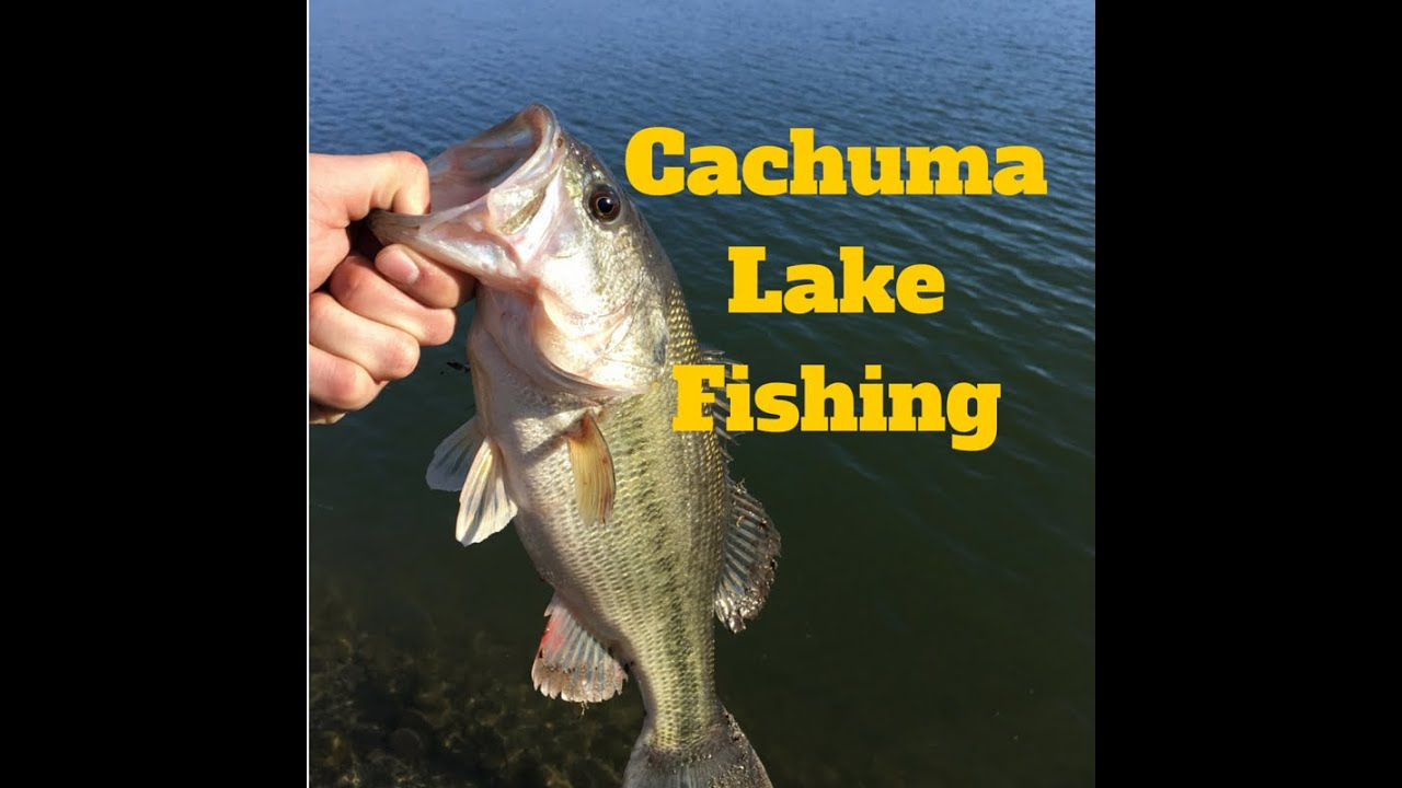 Southern california fishing cachuma lake 2016 youtube for Freshwater fishing in southern california
