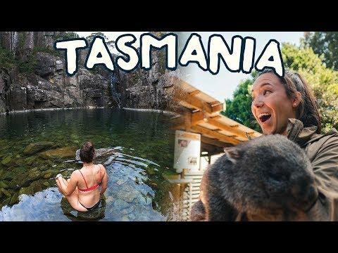 Exploring Cradle Mountain! | Tasmania Road Trip Part 1