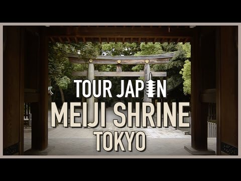 Amazing forest in the middle of Tokyo: Meiji Shrine (guide)
